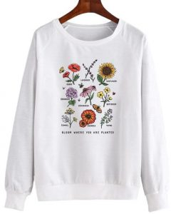 Bee Kind Sweatshirt LI30JL0